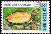Togan Postage Stamp Vietnamese Leaf Black-breasted Hill Turtle G — Stock Photo