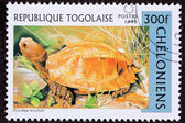 Canceled Togan Postage Stamp Orange Keeled Box Turtle Pyxidea Mo — Stock Photo