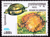 Canceled Cambodian Postage Stamp Spiny Turtle, Heosemys spinosa, — Stock Photo