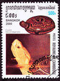 Canceled Cambodian Postage Stamp Chinese Box Turtle, Cuora Flavo — Stock Photo