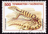 Canceled Tajikistan Postage Stamp Profile Desert Monitor Lizard, — Stock Photo