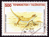 Canceled Tajikistan Postage Stamp Even-fingered Gecko, Lizard, A — Stock Photo