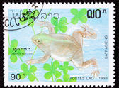 Canceled Laotian Postage Stamp Swimming Frog Muller's Platanna, — Stock Photo