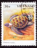 Canceled Vietnamese Postage Stamp Egg Laying Green Turtle Chelon — Stock Photo