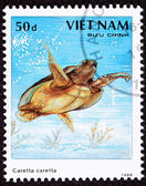 Canceled Vietnamese Postage Stamp Loggerhead Sea Turtle, Caretta — Stock Photo