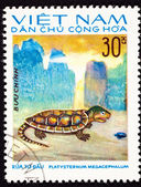 Canceled Vietnamese Postage Stamp Big-headed Turtle Platysternon — Stock Photo