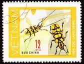 Cancelado o vietnã selo par amarelo besouros antena na pl — Foto Stock