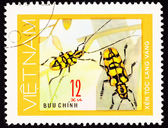 Canceled Vietnam Postage Stamp Pair Yellow Beetles Antenna On Pl — Stock Photo