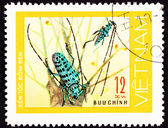 Canceled Vietnam Postage Stamp Pair Green Spotted Beetle Antenna — Stock Photo