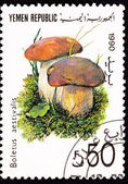 Canceled Yemani Postage Stamp Mushroom Summer Cepe Boletus Retic — Stock Photo
