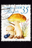 Canceled East German Postage Stamp Porcini Mushroom, Boletus Edu — Stock Photo