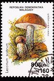 Canceled Madagascar Postage Stamp Clump Birch Bolete Mushroom Le — Stock Photo