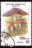 Canceled Madagascar Postage Stamp Clump Slippery Jack Mushrooms, — Stock Photo
