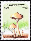 Benin poštovní známka psilocybinu, psychedelické houby, lysohlávka — Stock fotografie