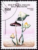 Cancelado o selo de psilocibina de benin, ps cogumelos psicodélicos — Fotografia Stock