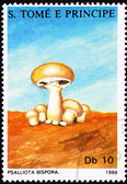 São Tomé Postage Stamp Button Mushroom, Agaricus Bisporus Psal — Stock Photo