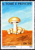 São Tomé Postage Stamp Button Mushroom, Agaricus Bisporus Psal — Stock Photo
