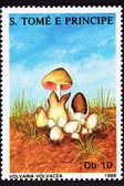 São Tomé Postage Stamp Paddy Straw Mushroom Volvaria Volvacea — Stock Photo