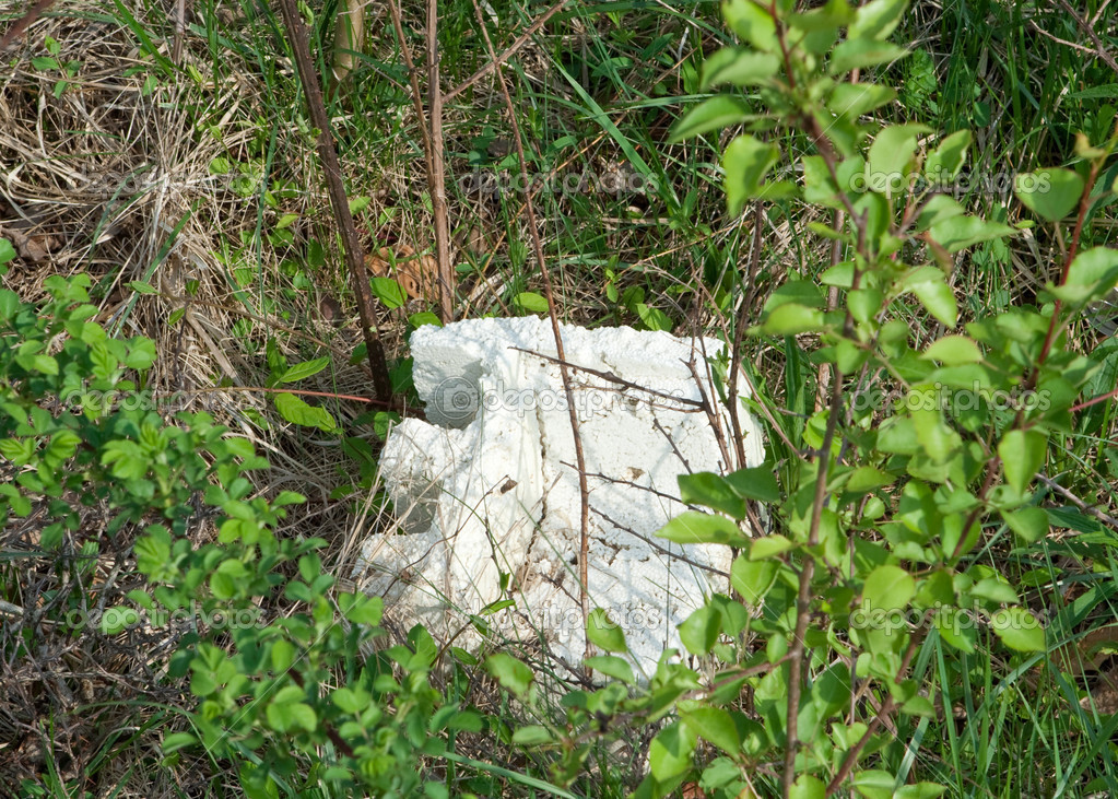Chunk of Styrofoam in Brush and Weeds Littering Pollution Theme  Stock Photo #7896928