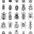 Hand draw insect icon - Stock Vector