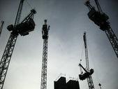 Dark-Cranes — Stock Photo