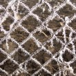 Ice crystals on a fence — Stock Photo