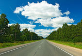 Road through the forest — Stock Photo