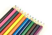 Simple Coloured Pencils — Stock Photo
