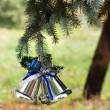 Outdoors Christmas tree decoration — Stock Photo