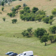 Vehicles parked at the meadow - Stock Photo