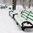 Stock Photo: Benches in the winter park