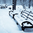 Snowy benches in the winter park — Stock Photo