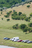 Vehicles parked at the meadow — Stock Photo
