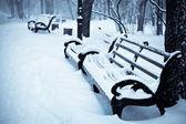 Panchine innevate a winter park — Foto Stock