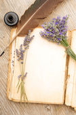 Old book with lavender flowers — Stock Photo