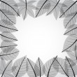 Royalty-Free Stock Vector Image: Grey leaves frame