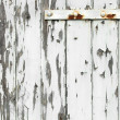 Old wooden door with peeling paint — Stock Photo #7888226