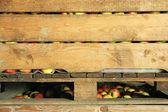 Red and yellow apples in crate — Stock Photo