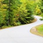 Road Zigzag — Stock Photo #7857500