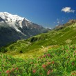 Royalty-Free Stock Photo: Savoy Alps-Europe