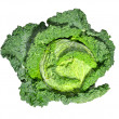 Savoy cabbage - 图库照片