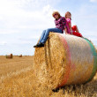 Children in field — Stock Photo