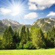 Julian Alps, Slovenia — Stock Photo #7865486