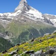 Stock Photo: Views of Matterhorn