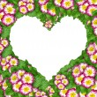 Flower heart - Stock Photo