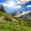 Stock Photo: Savoy Alps-Europe