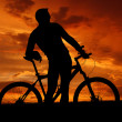 Mountain biker — Stock Photo #7865798