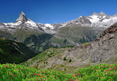 Matterhorn - Swiss Alps — Foto de Stock