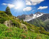 Savoy Alps-Europe — Stock Photo