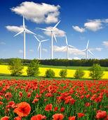 Röd vallmo med vindkraftverk — Stockfoto